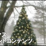 警備員アルバイトを辛いと思わずに新宿でクリスマスを…